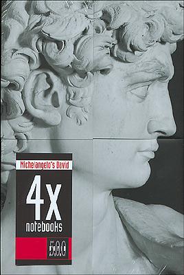 4 notebooks con profilo del David dedicati al Cinquecentenario del David
