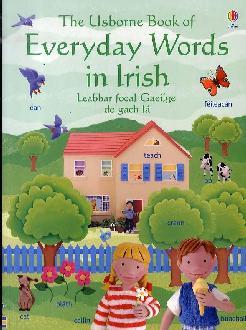Everyday Words in Irish.