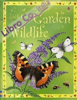 The Little Book of Garden Wildlife.