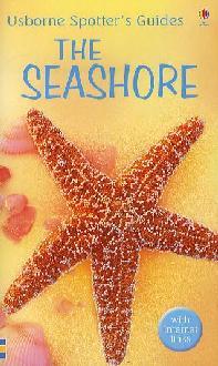 Seashore.