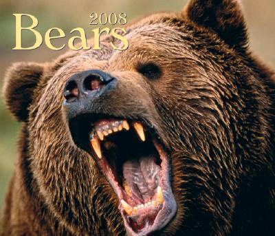 Bears 2008 Calendar.