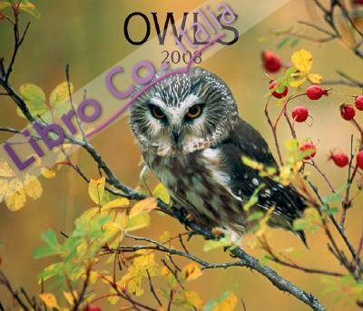 Owls 2008 Calendar