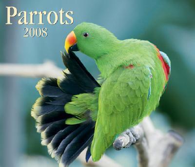 Parrots 2008 Calendar.
