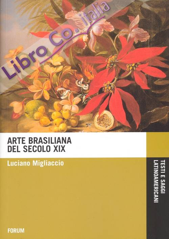 Arte brasiliana del XIX secolo.
