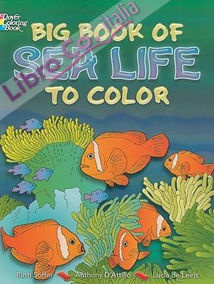 Big Book of Sea Life to Color