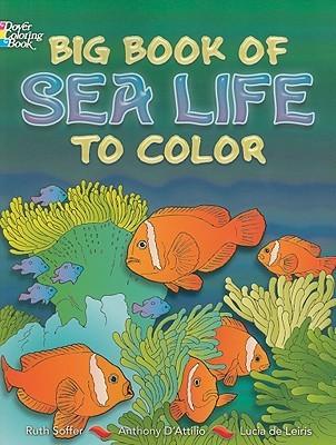 Big Book of Sea Life to Color.
