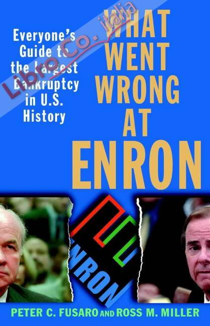 What Went Wrong at Enron.
