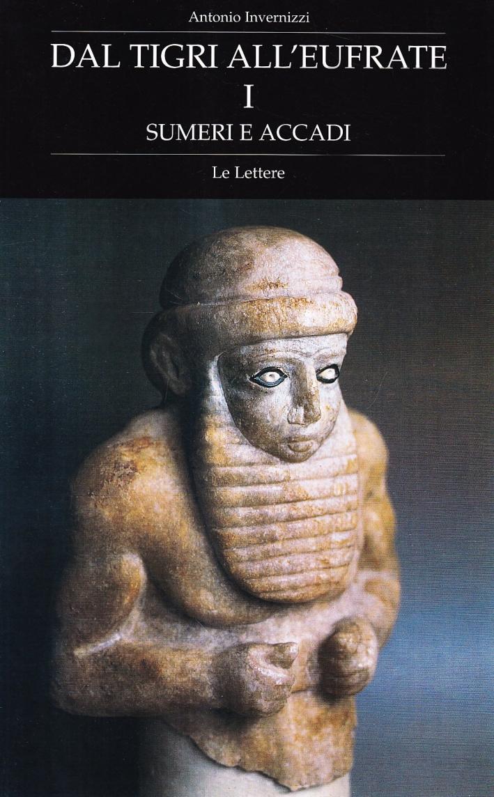 Dal Tigri all'Eufrate. Vol. 1: Sumeri e Accadi