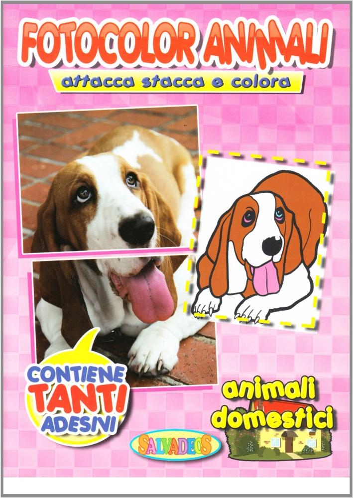 Fotocolor Animali dal Vero. Attacca/Stacca e Colora. Animali in Libertà