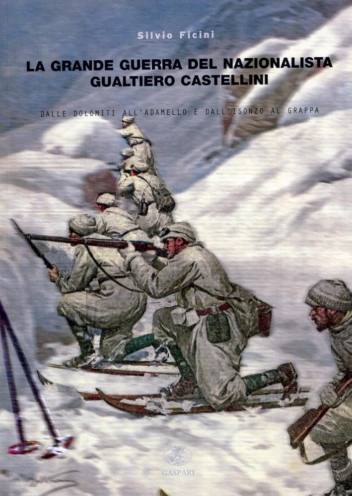 La grande guerra del nazionalista Gualtiero Castellini. Dalle Dolomiti all'Adamello e dall'Isonzo al Grappa.