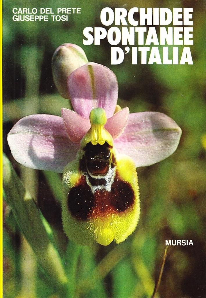 Orchidee spontanee d'Italia.