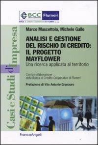 Analisi e gestione del rischio di credito. Il progetto Mayflower. Una ricerca applicata al territorio.