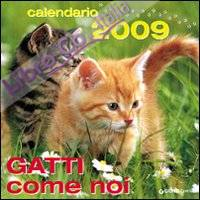 Gatti come noi. Calendario 2009. Ediz. illustrata