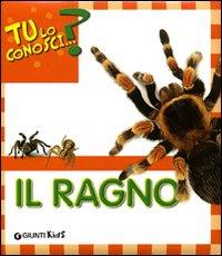 Il ragno. Ediz. illustrata