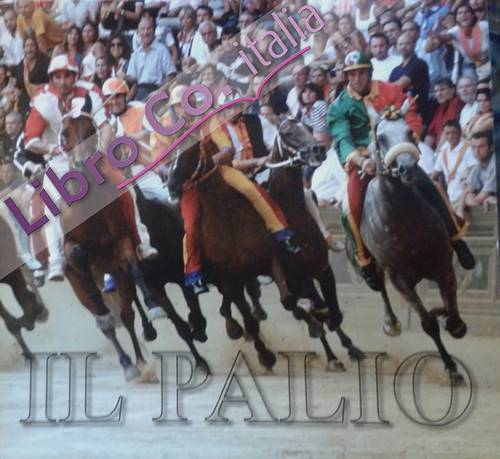 A Little guide to the Palio of Siena