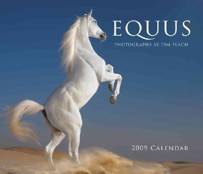 Equus 2009 Wall Calendar