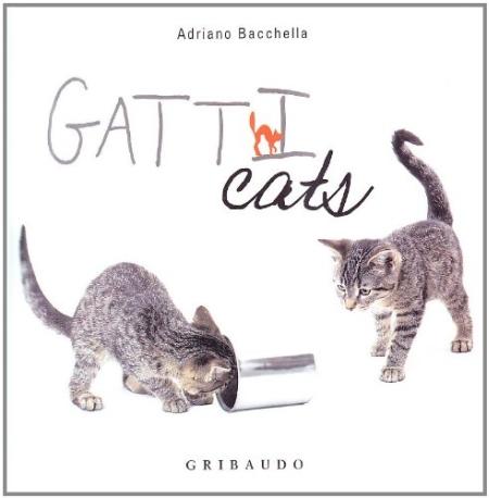 Gatt-Cats. Ediz. bilingue