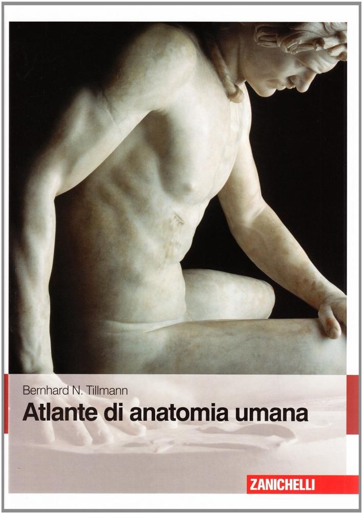 Atlante di anatomia umana.