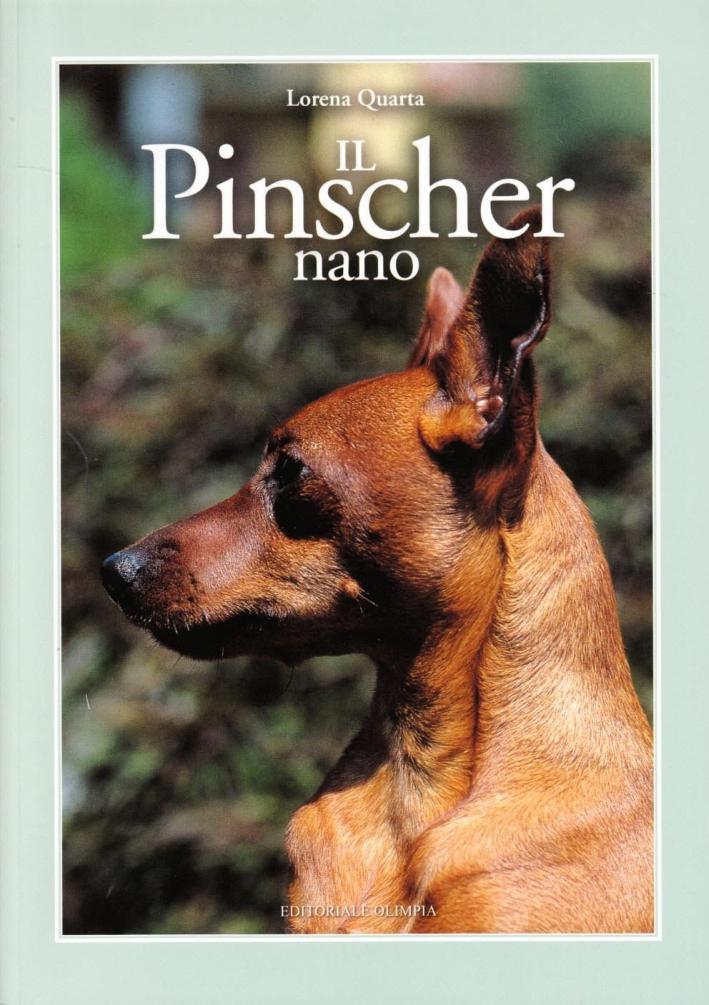 Il Pinscher Nano.