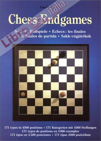 Chess endgames