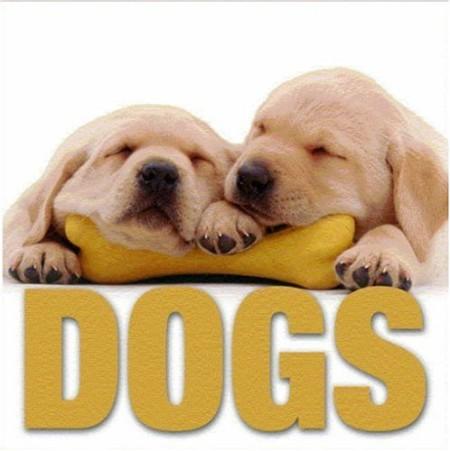 Dogs. Ediz. illustrata