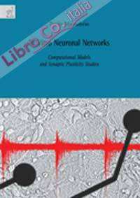 In Vitro Neuronal Networks. Computational Models and Synaptic Plasticity Studies