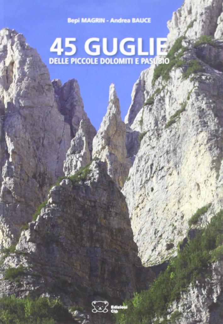 Quarantacinque guglie delle piccole Dolomiti e Pasubio.