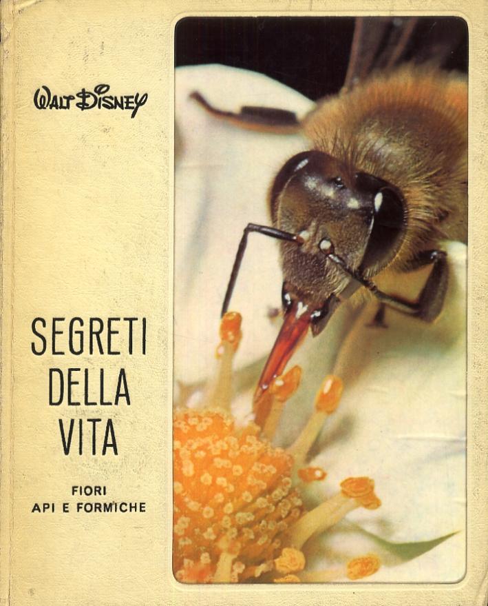 Segreti della vita. Fiori, api e formiche