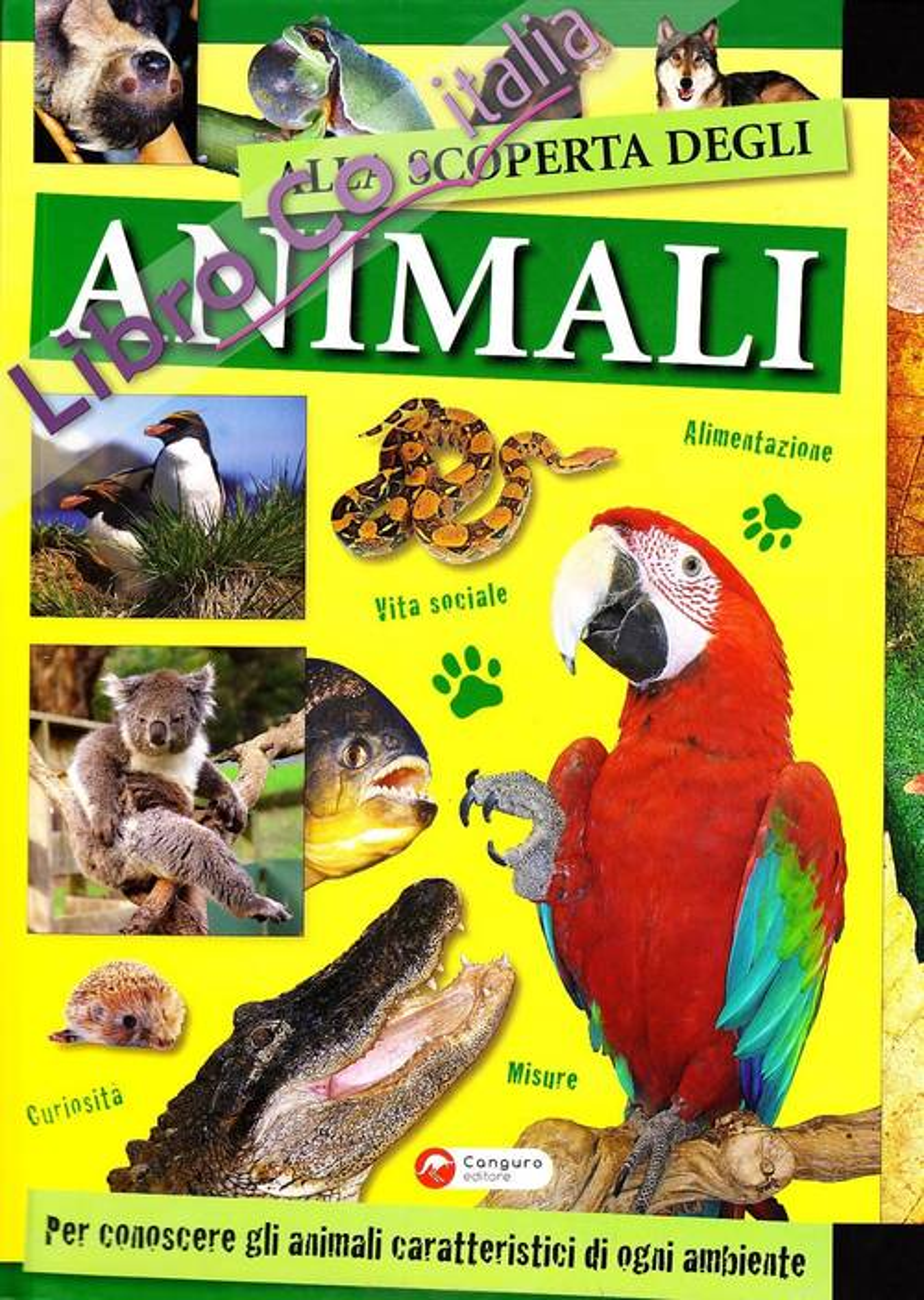 Alla scoperta degli animali