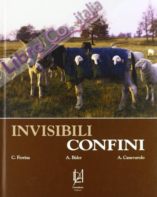 Invisibili confini. Ediz. illustrata