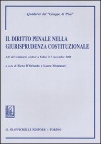 Il diritto penale nella giurisprudenza costituzionale. Atti del Seminario (Udine, 7 novembre 2008)