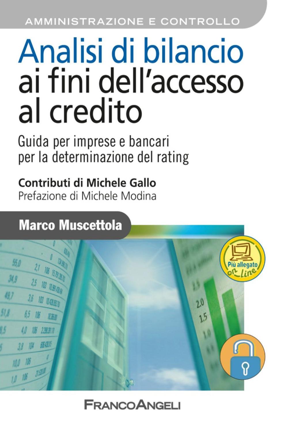 Analisi di bilancio ai fini dell'accesso al credito. Guida per imprese e bancari per la determinazione del rating. Con aggiornamento online