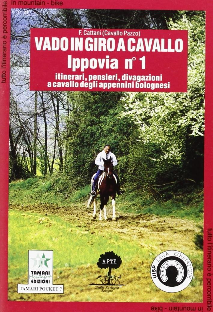 Vado in giro a cavallo. Ippovia.