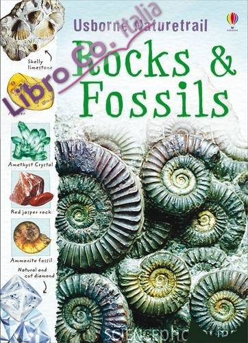 Rocks and Fossils.