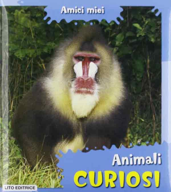 Animali, cuccioli in pericolo, curiosi. Amici miei