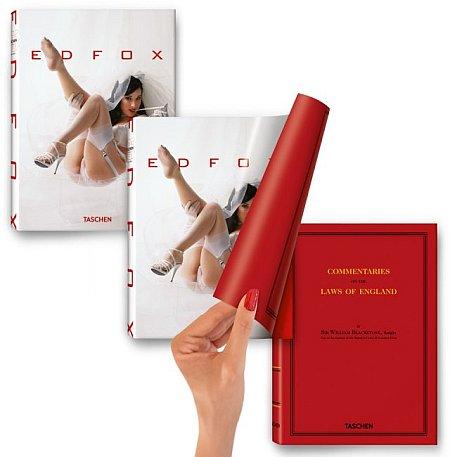 Ed Fox. Ediz. italiana, spagnola e portoghese. Con DVD