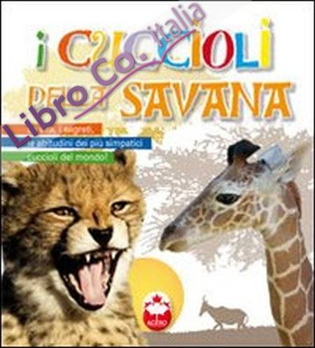 I cuccioli della savana.