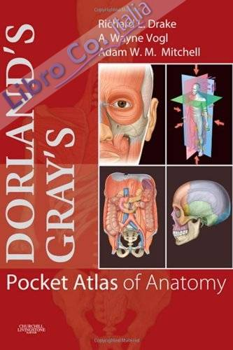Dorland's/Gray's Pocket Atlas of Anatomy.