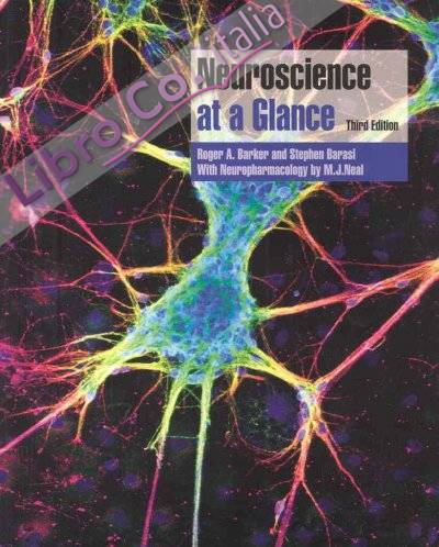 Neuroscience at a Glance.