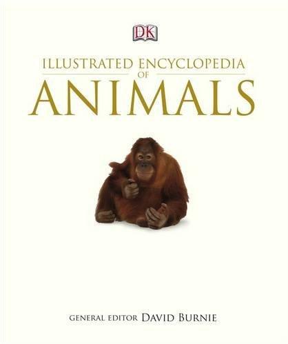 Illustrated Encyclopedia of Animals.