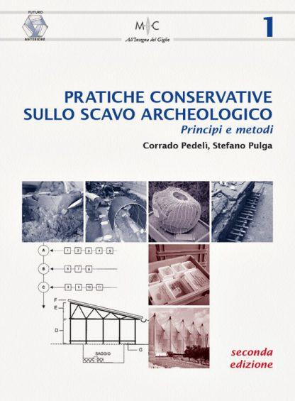 Pratiche conservative sullo scavo archeologico. Princìpi e metodi