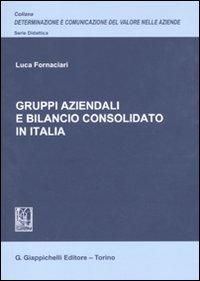 Gruppi aziendali e bilancio consolidato in Italia.