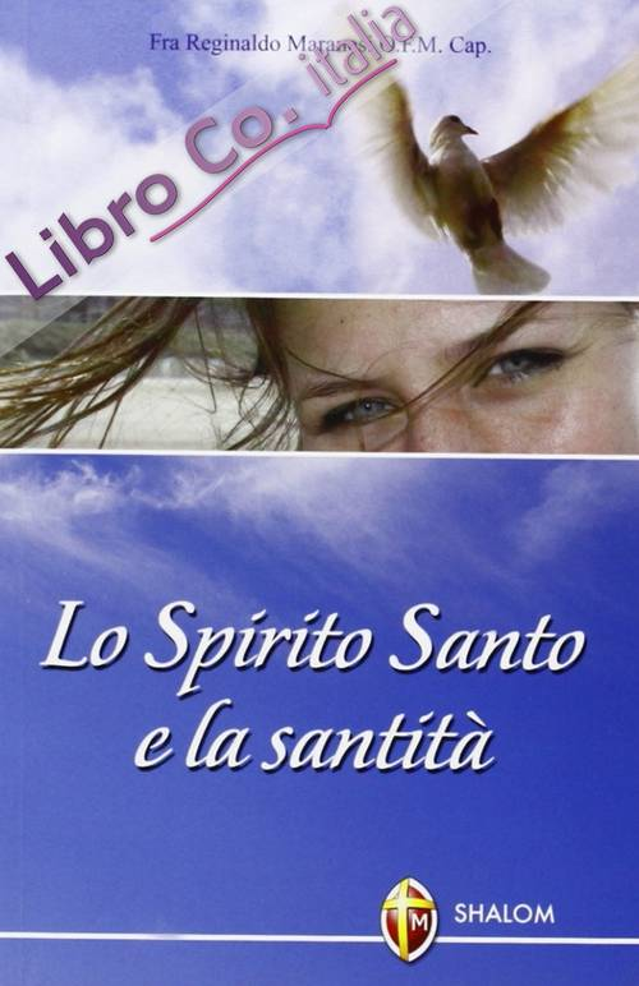 Lo Spirito Santo e la santità.