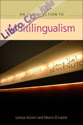 Introduction To Multilingualism
