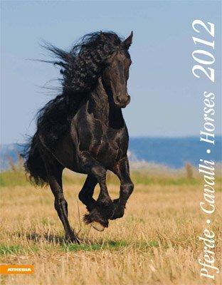 Cavalli. Calendario 2012