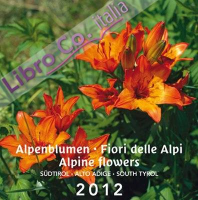 Postkartenkalender Dolomiti 2012