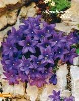Postkartenkalender fiori delle Alpi 2012