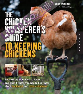 Chicken Whisperer's Guide to Keeping Chickens