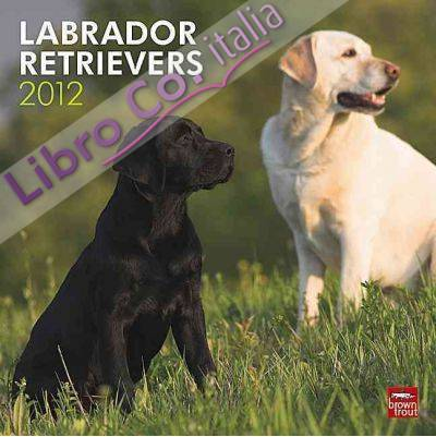 Labrador Retrievers Wall Calendar 2012