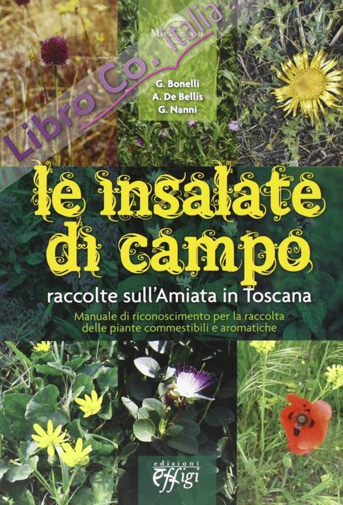 Le insalate di campo. Raccolte sull'Amiata in Toscana